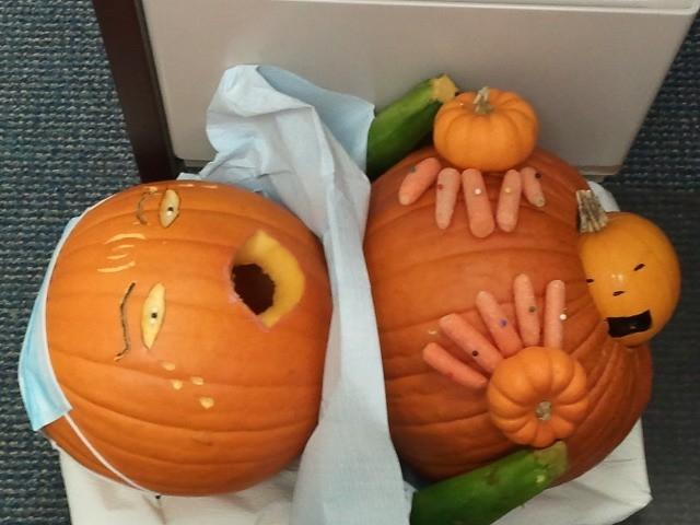 2011 1st class sleep pumpkin contest results